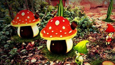 能用菌菇当建材做环保房子?